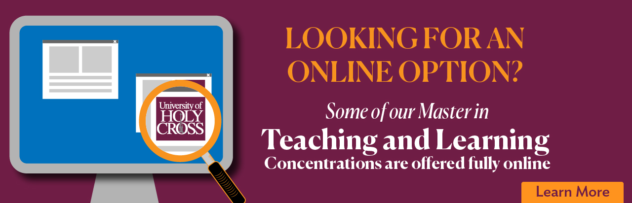 Teaching and Learning Concentrations are offered fully online